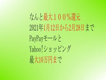お買上最大付与率:1等100%限度10万円2等10%3等2%ヤフーショップ